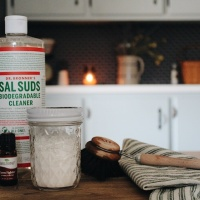 HOMEMADE SINK SCRUB